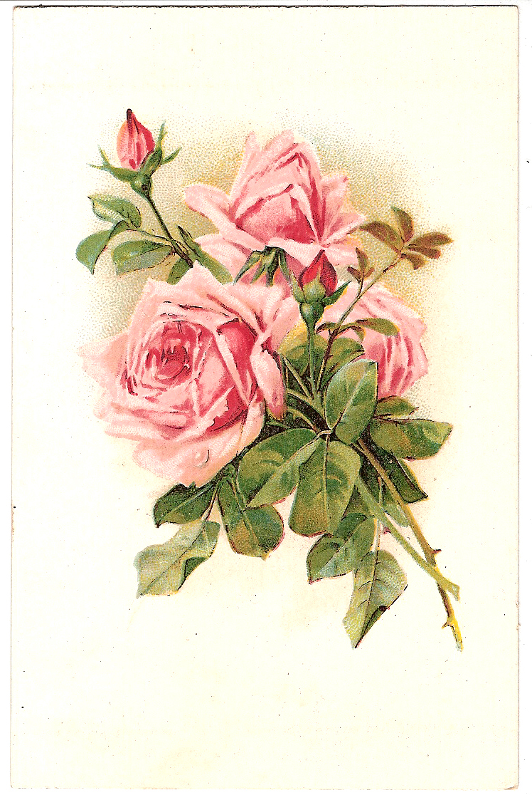 Vintage postcard  rosesVintage Rose Clip Art