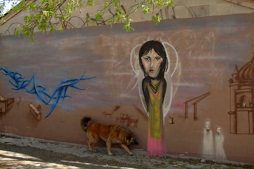 Mural with Stray Dog