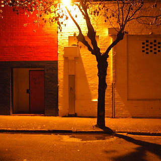 orange tree by red door