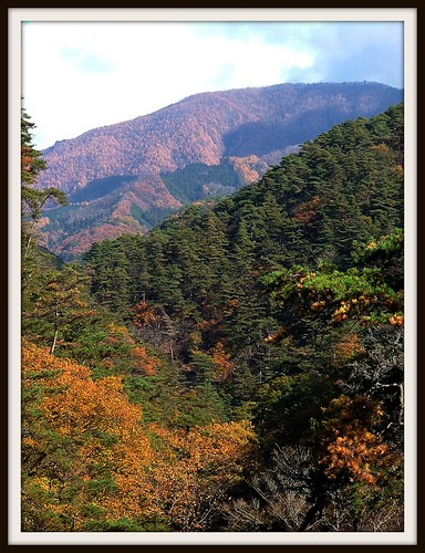 trees mountains nature colors beauty japan colours picnik shosenkyo dinyarghyara