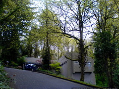 our house, springtime   DSC00106
