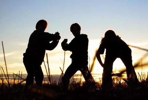 autumn sunset backlight self evening idiots arvid taneli penttilänmäki