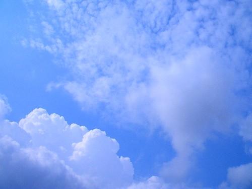 blue sky / 青空