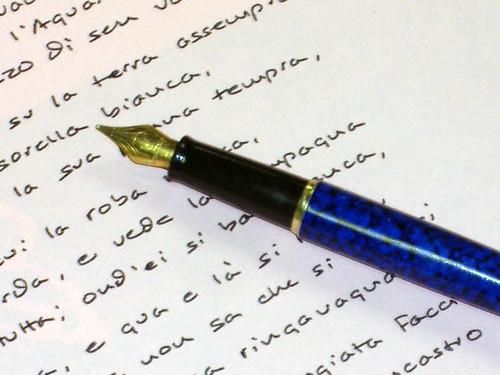 Workhorse pen