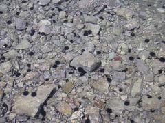 asphalt(0.0), soil(0.0), sand(0.0), granite(0.0), igneous rock(0.0), rubble(1.0), geology(1.0), rock(1.0), gravel(1.0),