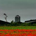a poppy field, a chicken farm and an ominous sky in norfolk (2) by monkeyinfez
