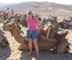 After the Camel Ride