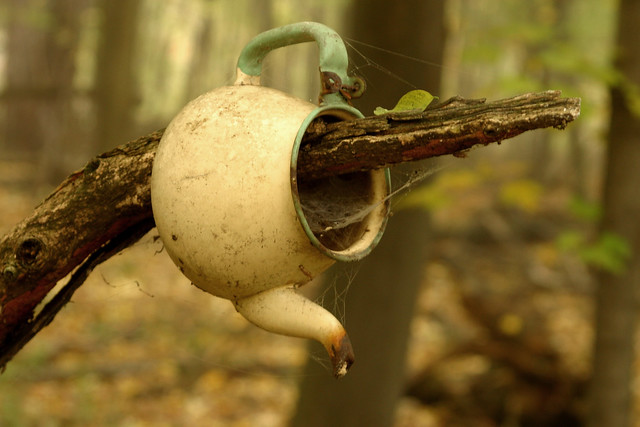 Teapot in the Woods