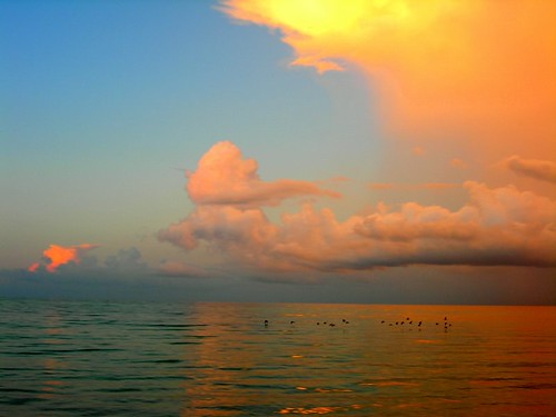 beach sunrise geotagged topf50 500v20f florida sanibel picturethis todayisagoodday tiagd kendouglas toptiagd