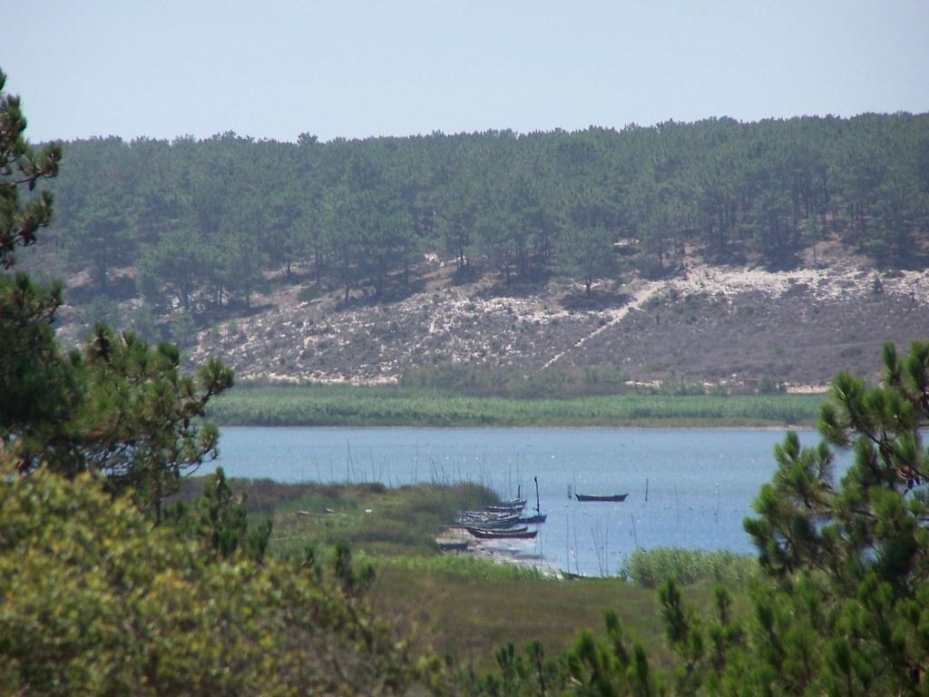 R serve naturelle de la lagune de santo andr et de sancha le jardin du portugal - Les jardins de la lagune oualidia sylvie ...