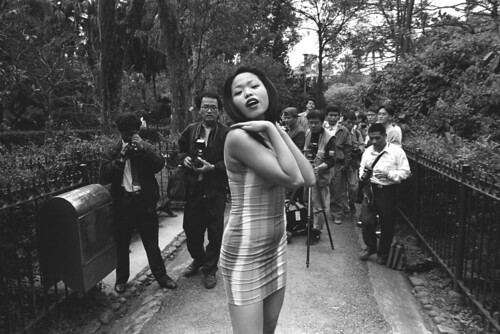 amateur photographers are shooting show girl in botanic garden, taipei, taiwan.