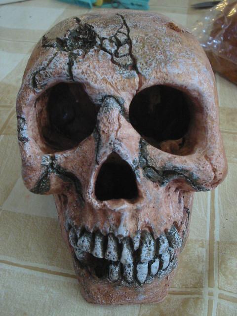 Decoration Aquarium Skull