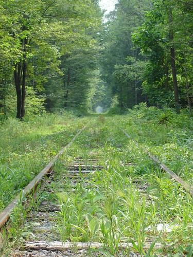 Tracks into infinity