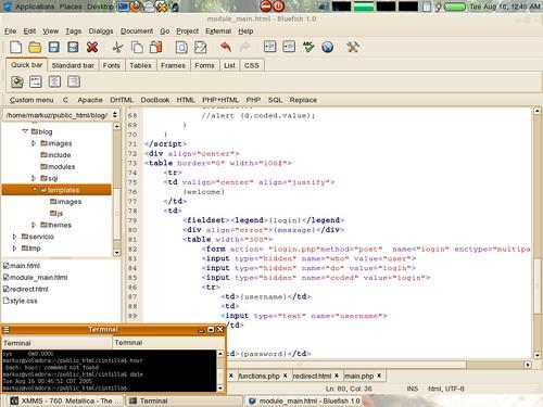 Female Coders | Female Programmer | Digital Code Courses | Technology Jobs