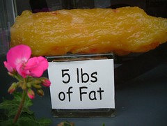Five Pounds of Fat!