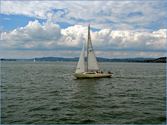 Am Bodensee ; The Lake Constance