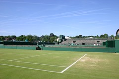 sport venue, soft tennis, grass, tennis court, tennis, sports, ball game, stadium,