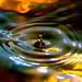Dark water by mrhyde_br