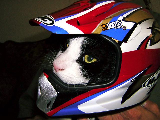 Image Result For Bike Helmet Safety