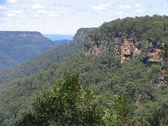 mountain, hill, plateau, terrain, jungle, vegetation, escarpment, cliff,