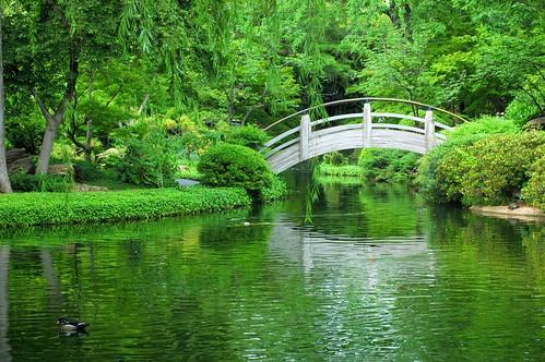 bridge trees reflection green water japan garden landscape zen etsy moonbridge assignmentdfw3 msh1007 msh100720
