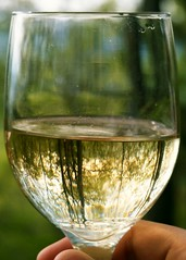 alcohol, wine glass, wine, drinkware, stemware, distilled beverage, glass, green, white wine, drink, alcoholic beverage,