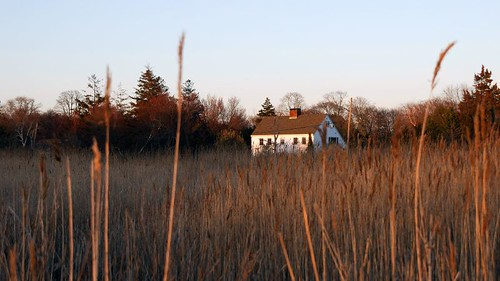 Marsh at Bayport by Alida's Photos