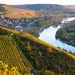 Franconian vineyards in Autumn finery