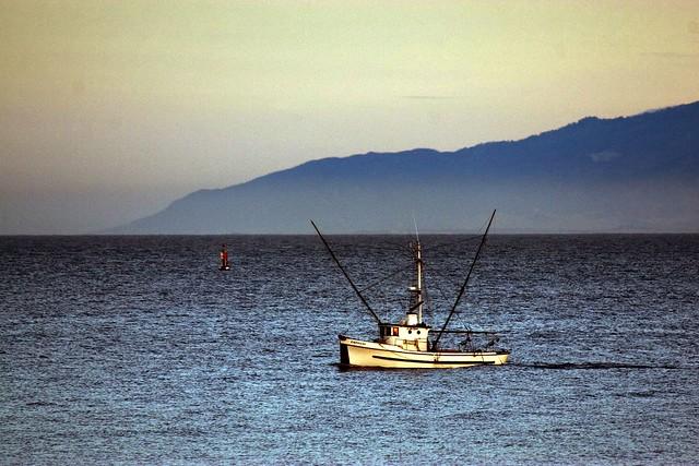 santa cruz fishing flickr photo sharing