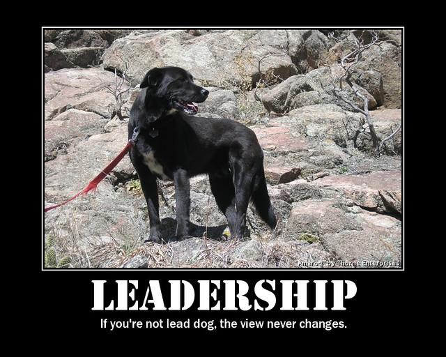 Black Dog Enterprises Org Watch Wshl
