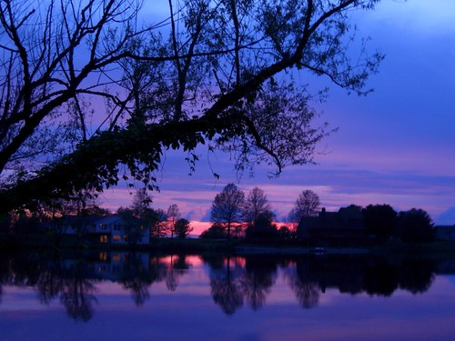 pink sunset lake tree water silhouette reflections landscape illinois purple hickorylake