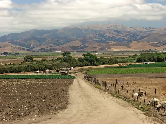 Wild Things Ranch, Salinas, California.