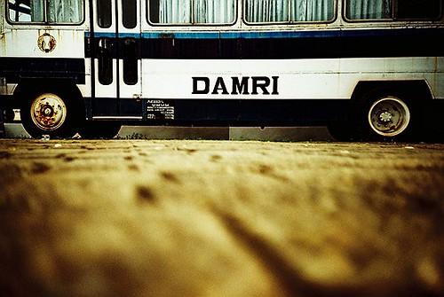 Bus DAMRI by * miQ