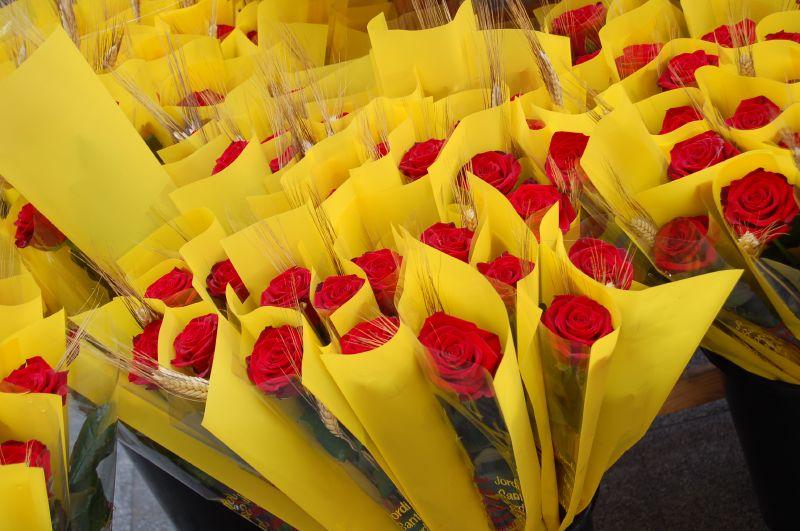 flores dia sant jordi