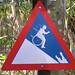 Wheelchair Sign by Renier & Rene