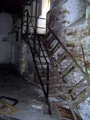 Old entrance steps 2007