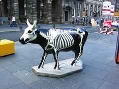 Cow Parade, Edinburgh