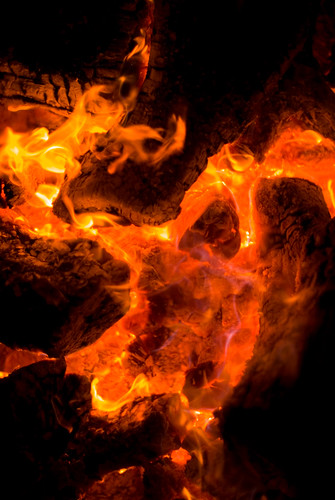 red arizona abstract fire young campfire