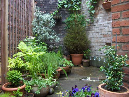 Garden ideas a gallery on flickr for Very small courtyard ideas