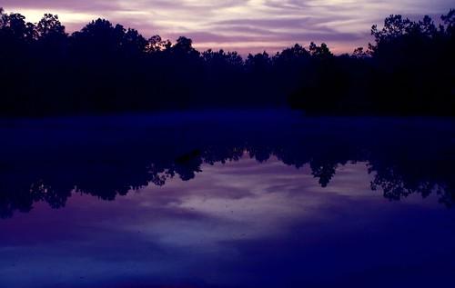 morning blue trees mist reflection nature manipulated sunrise catchycolors landscape pond louisiana mrgreenjeans gaylon canonef28135mmf3556isusm gaylonkeeling