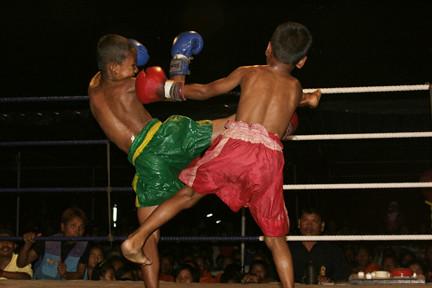 Muay Thai Series