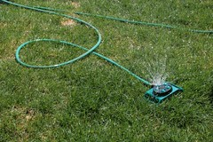 outdoor power equipment, grass, irrigation sprinkler, green, lawn,