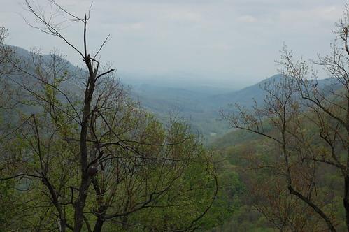 geotagged northcarolina valley greenriver geo:lat=35253171 geo:lon=82329397