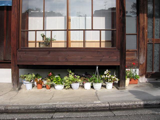 Tokyo Plant Pots 010 東京植木鉢