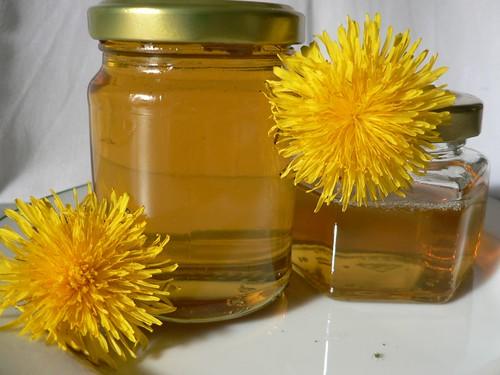 Dandelion Honey - Löwenzahnhonig