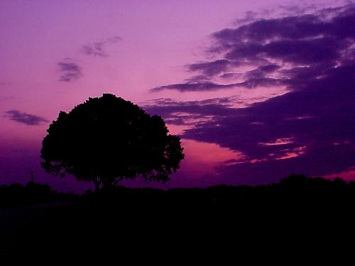 sunset sky silhouette clouds landscape florida okeechobee sonymavica