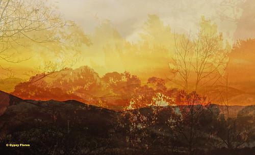 Sunrises in Corsica/Sunsets in California