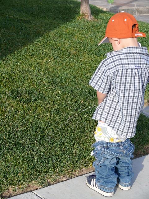 Piss on grass