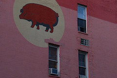 Red Pig Rising by Intangible Arts