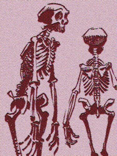 sad pink skeletons